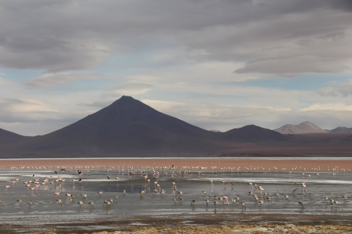 Traveling and backpacking in the atacama desert, chile and Bolivia